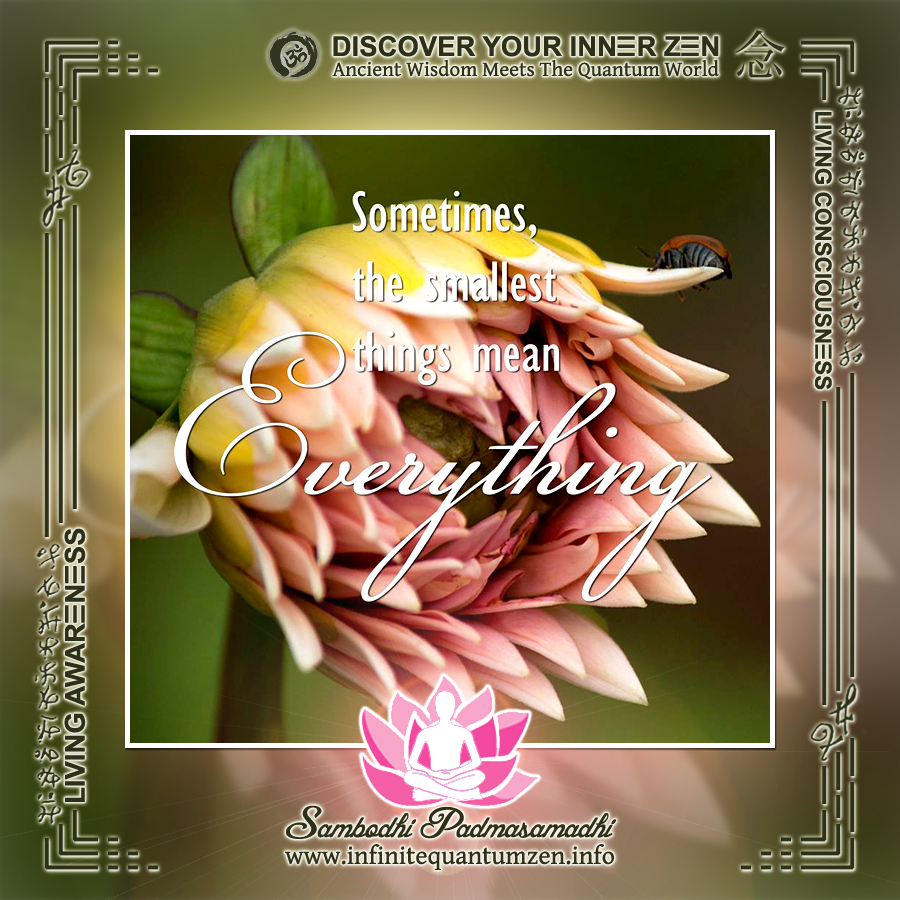 Sometimes the smallest things mean Everything - Infinite Quantum Zen, Success Life Quotes