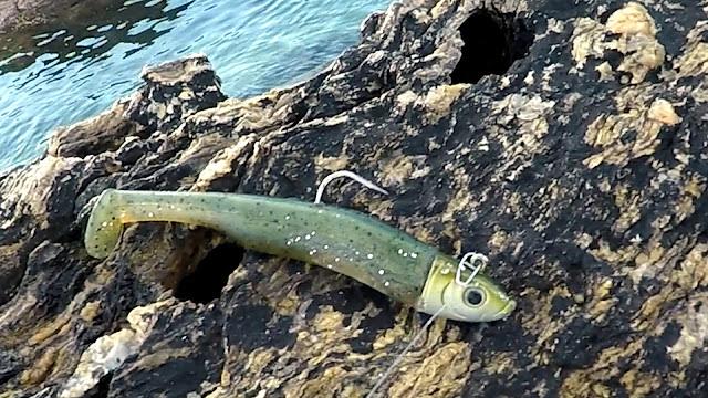 VINILO - Caña de spinning Fisterra en acción de pesca