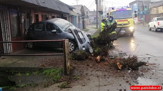 Osorno: Automóvil chocó violentamente contra árbol