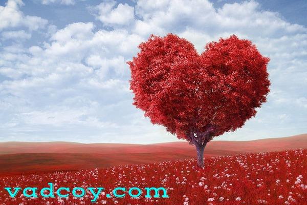 Valentine (Hari Zina Internasional)