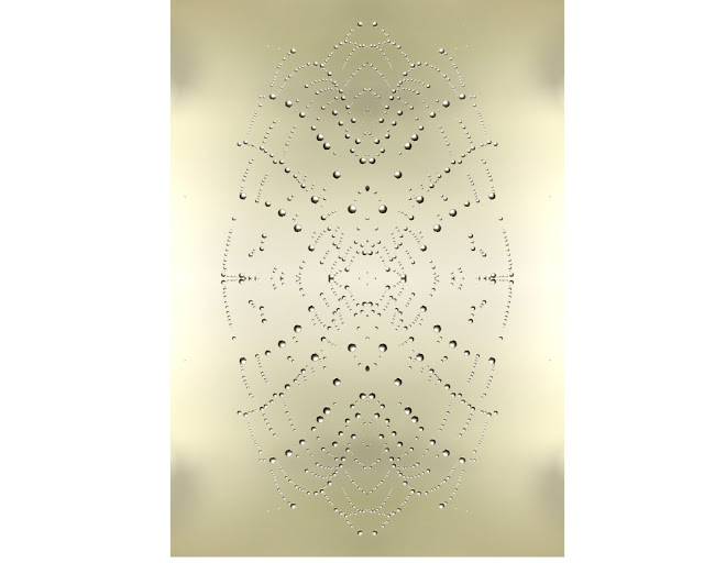 web, dew, design, background, nature, Cobweb beauty