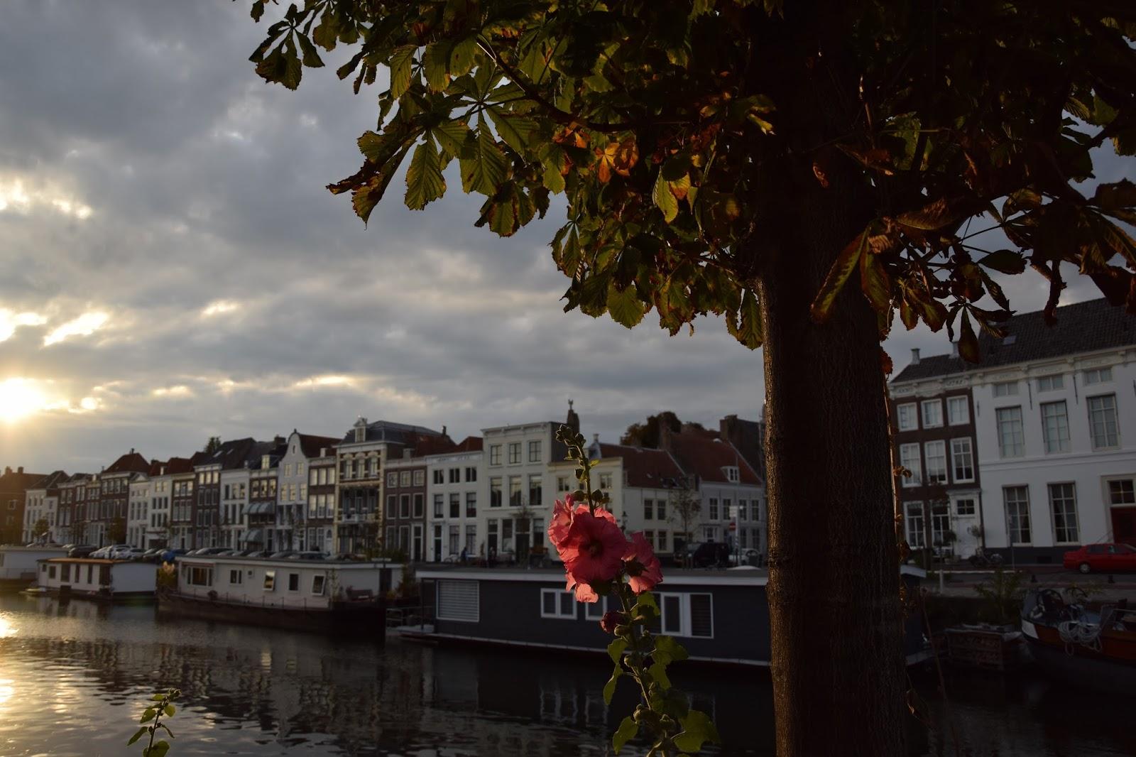 Middelburg kanał zachód słońca