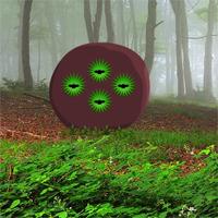 G2R Foliage Forest Escape