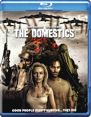 The Domestics 2018 BD25 Latino