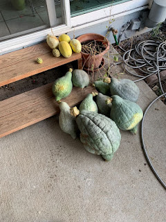 Group of squash on steps