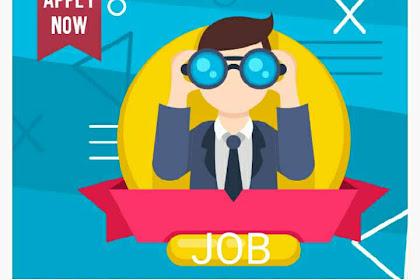 Pengalaman Dapet Invoice  Dan Job Pertama Kali