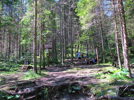 Sokolia Dolina - wylot.