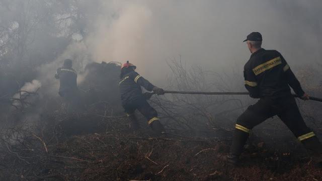 Εύβοια: Μάχη δίνουν οι πυροσβέστες με τις αναζωπυρώσεις