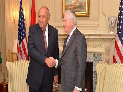 وزير الخارجية مصر مستمرة فى جهودها لاستئصال الإرهاب