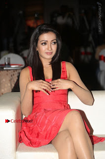 Actress Catherine Tresa Unveils Intex Air Conditioners  0054.jpg