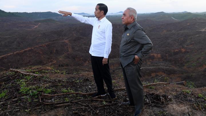 Jokowi Minta Masukan Desain Ibu Kota Baru, Netizen: Tolong Ya Pak, Jangan Sampai Hutannya Rusak!