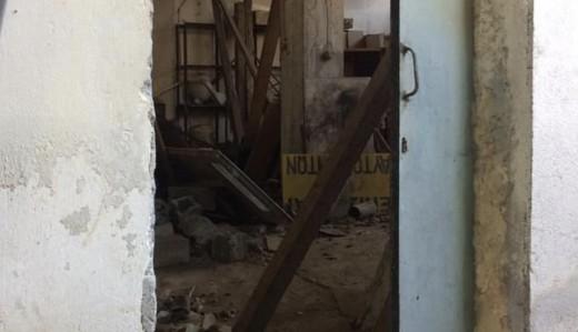 Φρίκη στο Μοσχάτο: Δεκάδες αδέσποτα βρέθηκαν νεκρά σε σπίτι - Αμέτρητοι σκελετοί