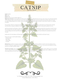 catnip, herb magic, herbarium, apothecary, herb, green witch, witchcraft, correspondences, plant magic, magick, magic, plant magick, kitchen witch, hedgewitch, hedge witch, witch, book of shadows, grimoire