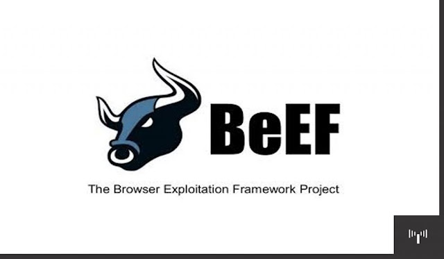 Beef-XSS For Browser Exploitation