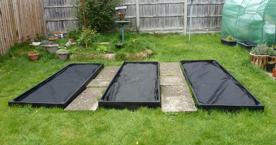 vegetable beds painted black