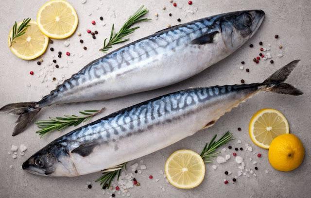 Kολιός και σκουμπρi Τα... ταπεινά ψάρια του Αυγούστου