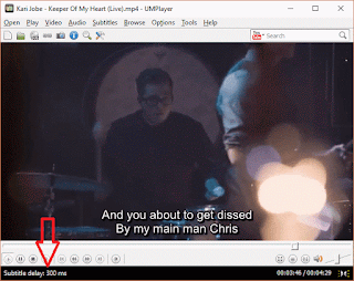 UMPlayer Subtitle Delay with Shortcut