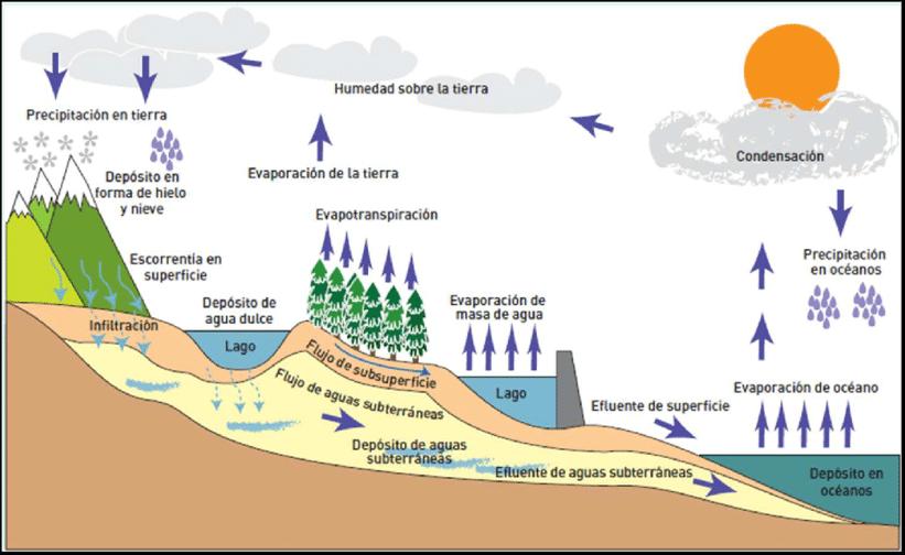 La Bitácora Verde Ciclo Hidrológico Del Agua