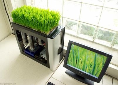 CPU Komputer jadi pot tanaman.
