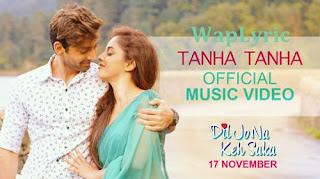 Tanha Tanha Song Song Lyrics