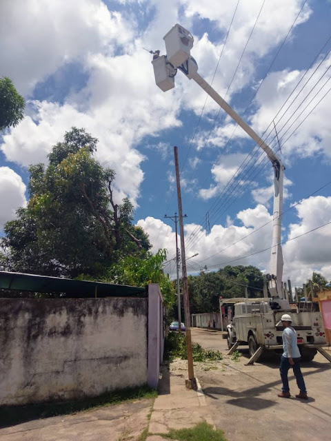 APURE: En los municipios San Fernando y Biruaca fueron atendidos circuitos con Plan de Control de Vegetación en Apure