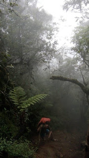 Gunung Cikuray via cikajang