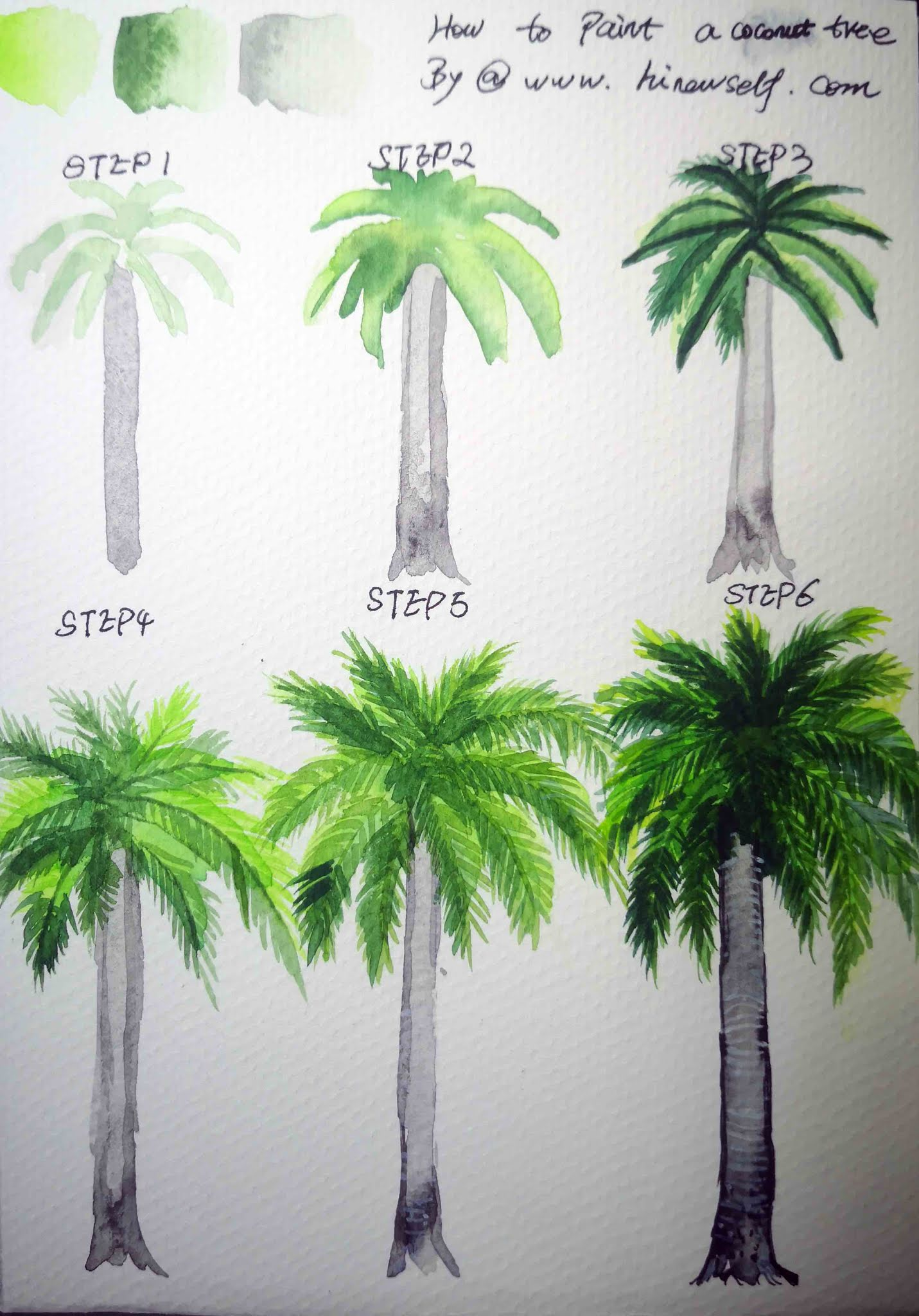 How to draw  coconut tree step by step for beginner