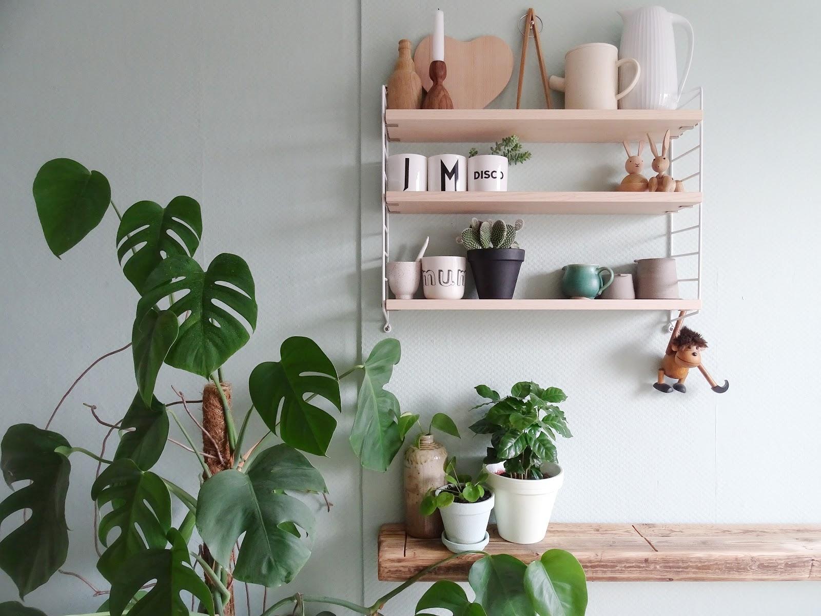 Küchen-Makeover mit neuer Wandfarbe in Mint + Styling-Ideen für Regale + Deko-Ideen mit Pflanzen, einem Altholzregal und String-Regal - www.mammilade.blogspot.de