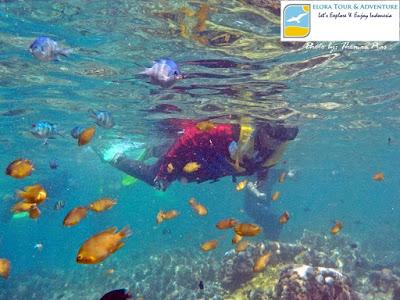 snorkeling di spot kelagian lunik