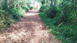 Kegiatan Pembangunan Cor Jalan Dusun Citelu RT 02/RW 01 Blok Cibogo Tahun Anggaran 2020