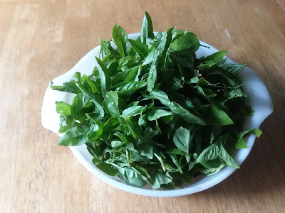 A bowl of freshly picked basil