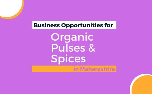Business Opportunities for Organic Pulses & Spices in Maharashtra