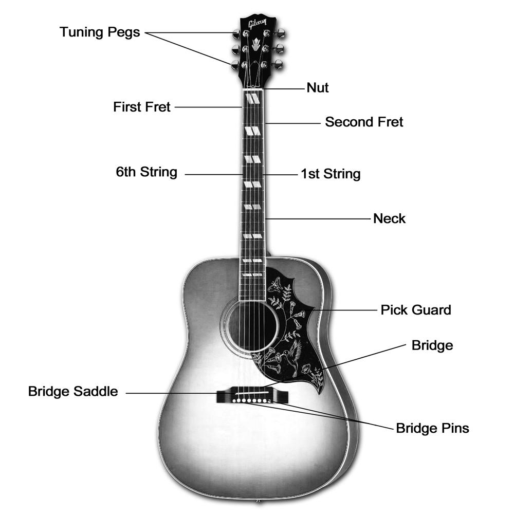 Parts Of The Guitar Clearest Guitar Parts Diagram Lesson
