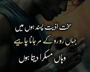 Best Urdu Shayari SMS   Beautiful Urdu Shayari SMS For You