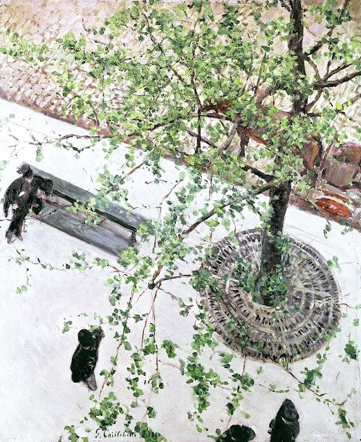 Gustave Caillebotte, looking down on an urban tree
