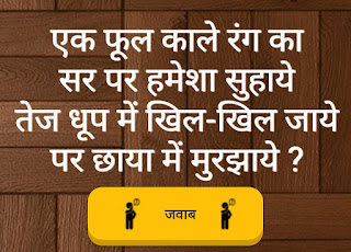 Paheli in hindi on a image