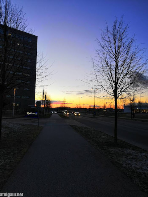 January Morning in Lund