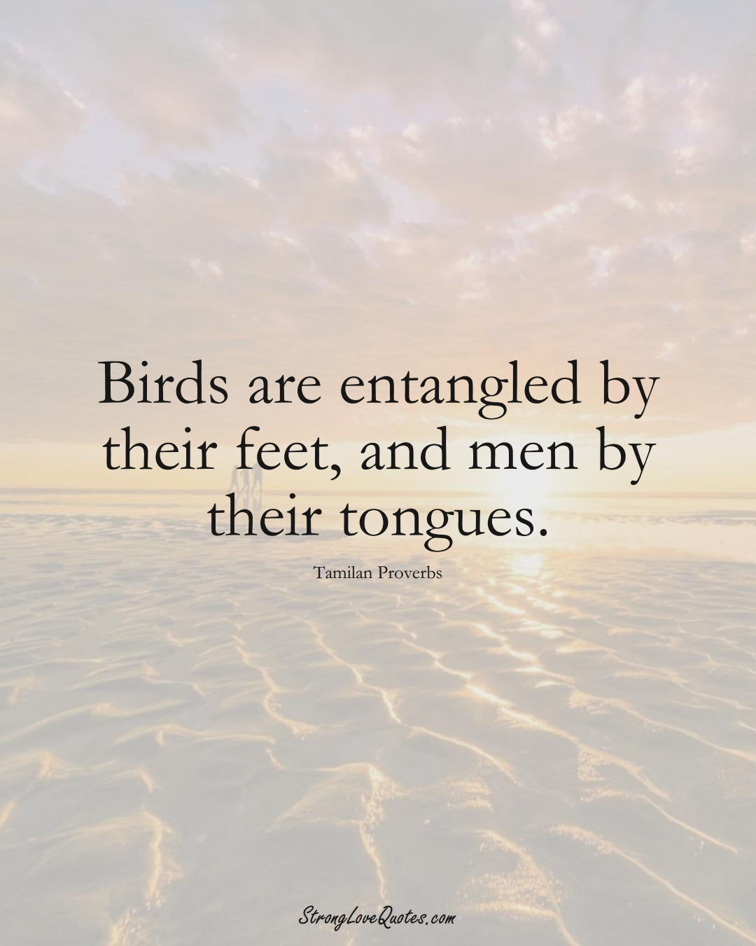 Birds are entangled by their feet, and men by their tongues. (Tamilan Sayings);  #aVarietyofCulturesSayings