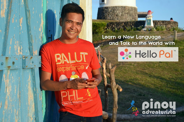 Hello Pal App Review Feature