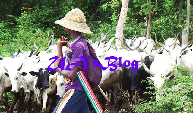 Herdsmen invasion: Ebonyi community deserted, over 30 houses razed