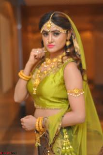 Sony Charishta in Green Choli Ghagra Transparent Chunni Ethnic Wear March 2017 064.JPG