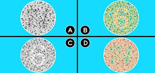 Which images feature the same numbers?
