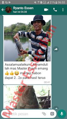 Umpan Ikan Nila Khusus Di Empang