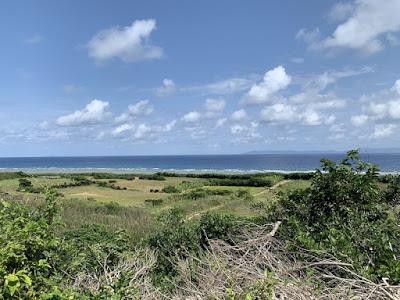 下田原城跡の丘から下田原貝塚方向