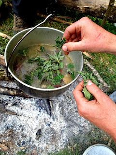soupe plantes sauvages unis vers nature