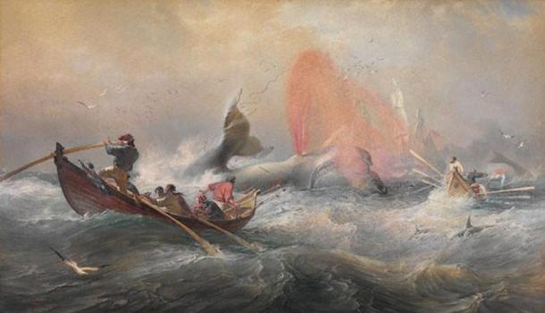 وحش البحار العملاق