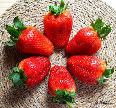 Natillas caseras con fresas