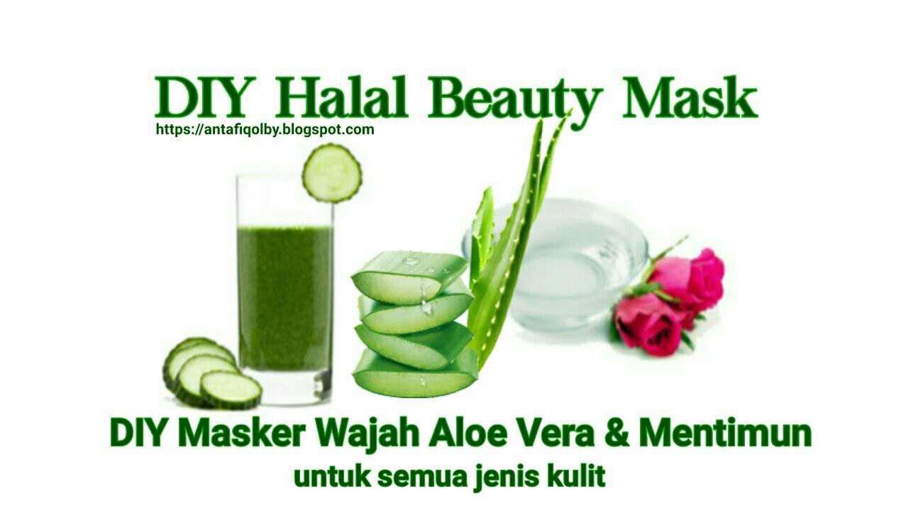 Cara Membuat Masker Wajah Lidah Buaya Dan Mentimun Halal Beauty