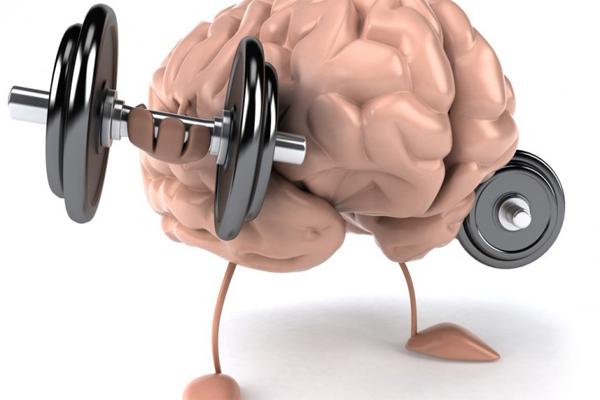 Tingkatkan Kesehatan Otak Hanya Dengan Rutin Berolahraga Pagi