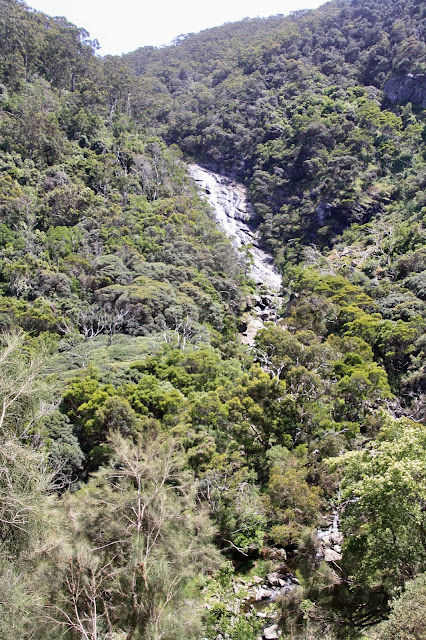 long waterfall surrounded by bushland